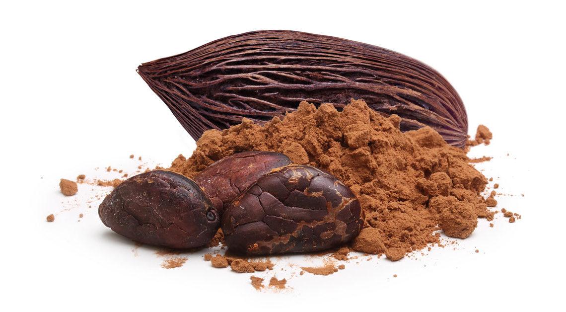 le proprieta nutrizionali del cacao